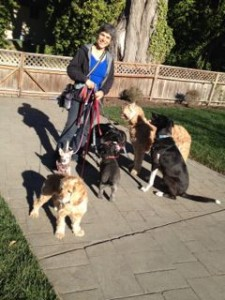Mirla with Jimmy, Henry, Ozzy, and her pups